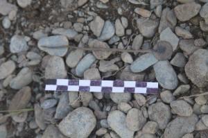 Hallan objeto ceremonial en conjunto arqueológico de Salapunku en Cusco