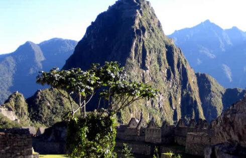 Machu Picchu 100 años: WAYNA PICHU