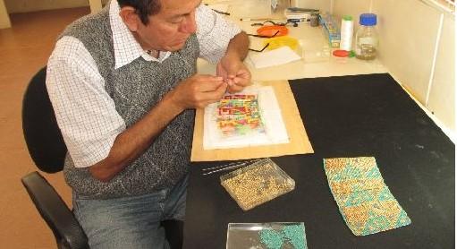 Restauran segundo par de brazaletes del Señor de Sipán
