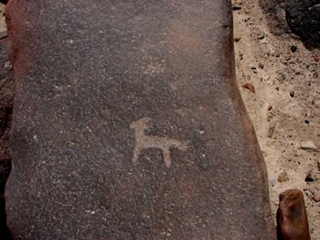 petroglifos_de_san_francisco_de_miculla_42