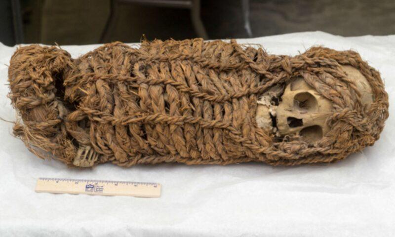 Retorna al Perú momia de origen aimara recuperada en EE. UU.